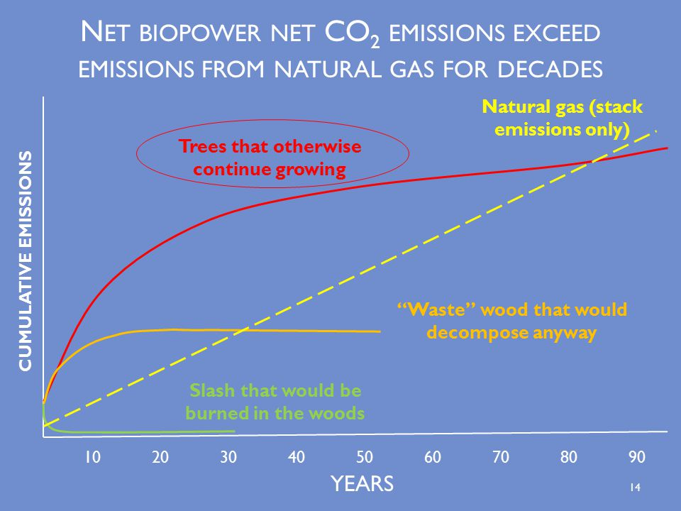 N ET BIOPOWER NET CO 2 EMISSIONS EXCEED EMISSIONS FROM NATURAL GAS FOR DECADES Waste wood that would decompose anyway Trees that otherwise continue growing Slash that would be burned in the woods CUMULATIVE EMISSIONS YEARS Natural gas (stack emissions only) 14