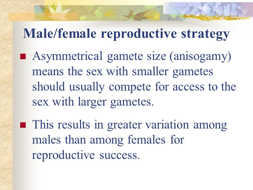 Hermaphrodites reproduce asexually