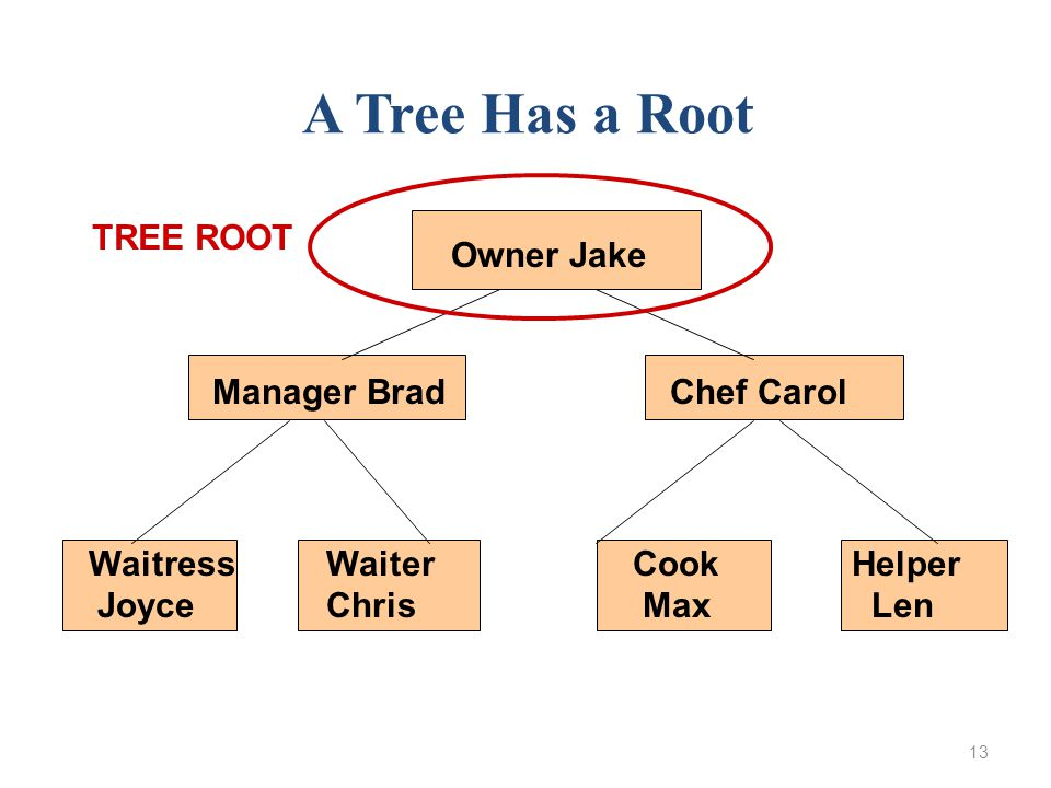 13 Owner Jake Manager Brad Chef Carol WaitressWaiter Cook Helper Joyce Chris Max Len A Tree Has a Root TREE ROOT
