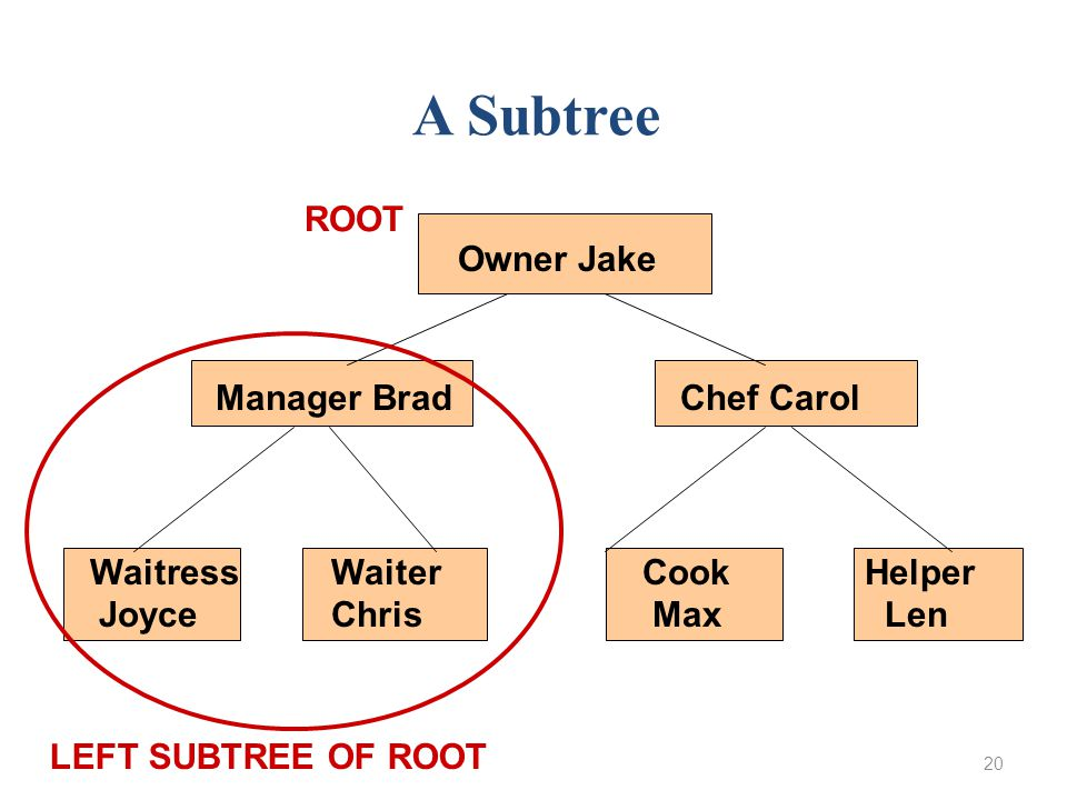 20 Owner Jake Manager Brad Chef Carol WaitressWaiter Cook Helper Joyce Chris Max Len A Subtree LEFT SUBTREE OF ROOT ROOT