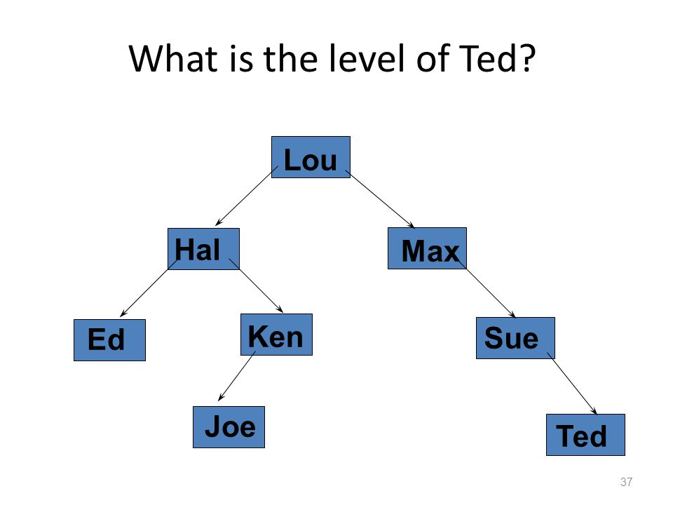 What is the level of Ted 37 Hal Lou Ken Joe Ted Sue Ed Max