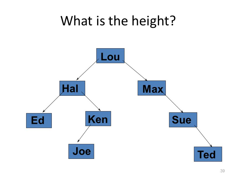 What is the height 39 Hal Lou Ken Joe Ted Sue Ed Max