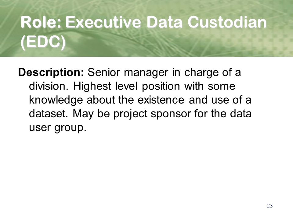 23 Role: Executive Data Custodian (EDC) Description: Senior manager in charge of a division.