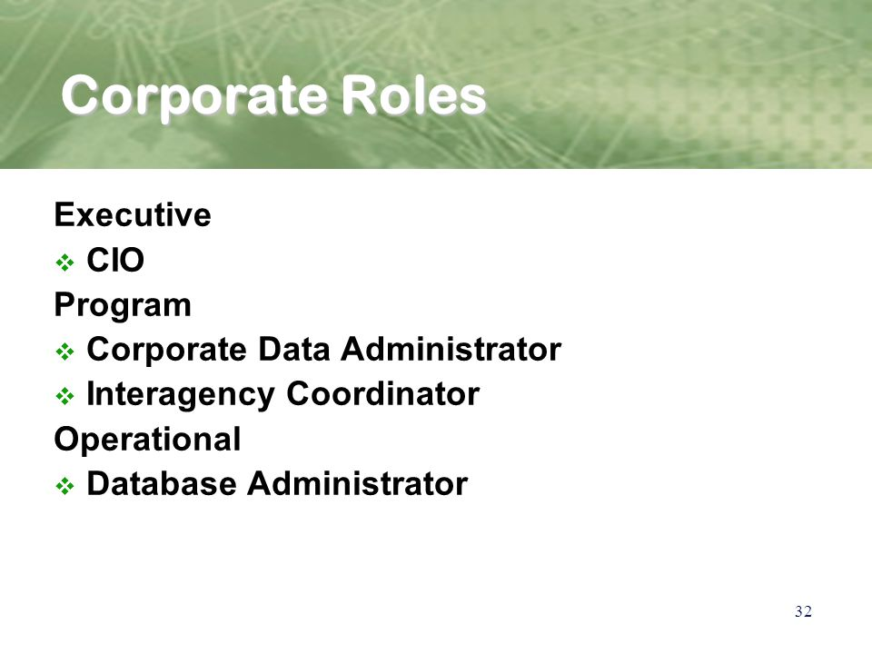 32 Corporate Roles Executive v CIO Program v Corporate Data Administrator v Interagency Coordinator Operational v Database Administrator