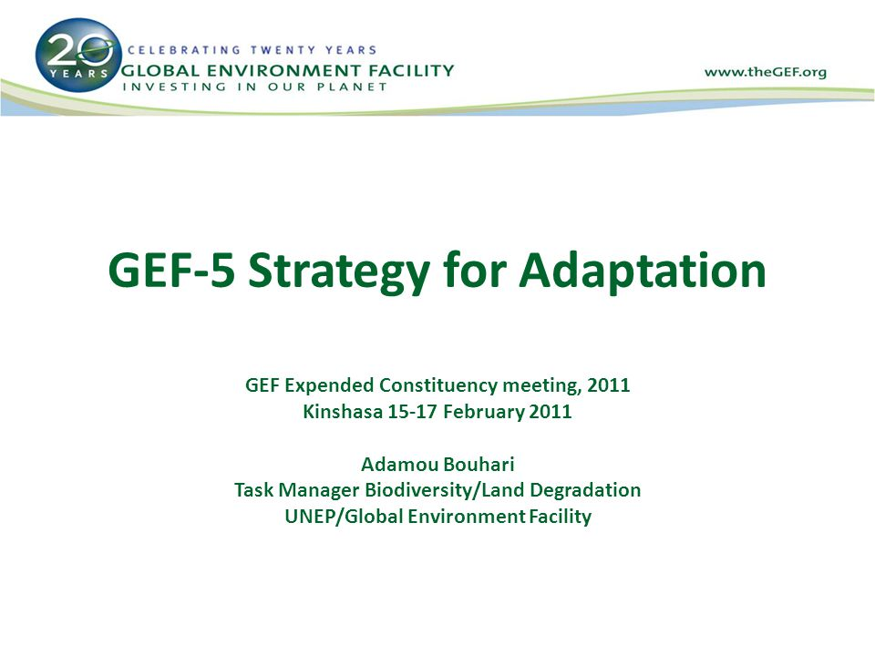 GEF-5 Strategy for Adaptation GEF Expended Constituency meeting, 2011 Kinshasa February 2011 Adamou Bouhari Task Manager Biodiversity/Land Degradation UNEP/Global Environment Facility
