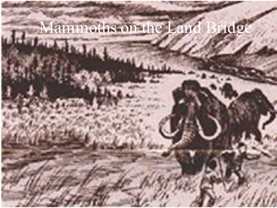 Mammoths on the Land Bridge