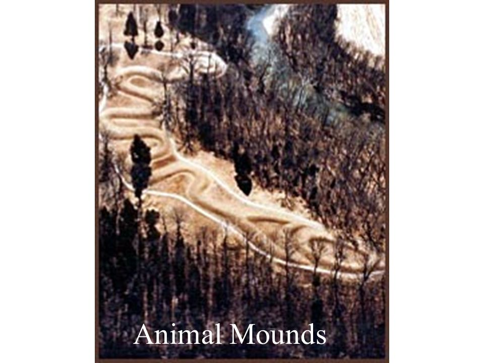 Animal Mounds