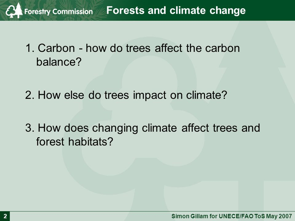 Forestry and Climate Change - issues and potential