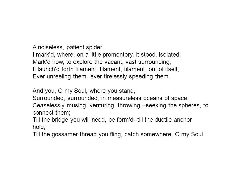 in whitmans poem a noiseless patient spider the speaker