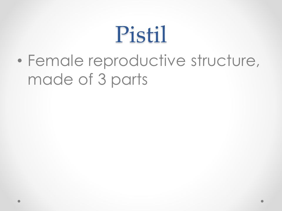 Pistil Female reproductive structure, made of 3 parts