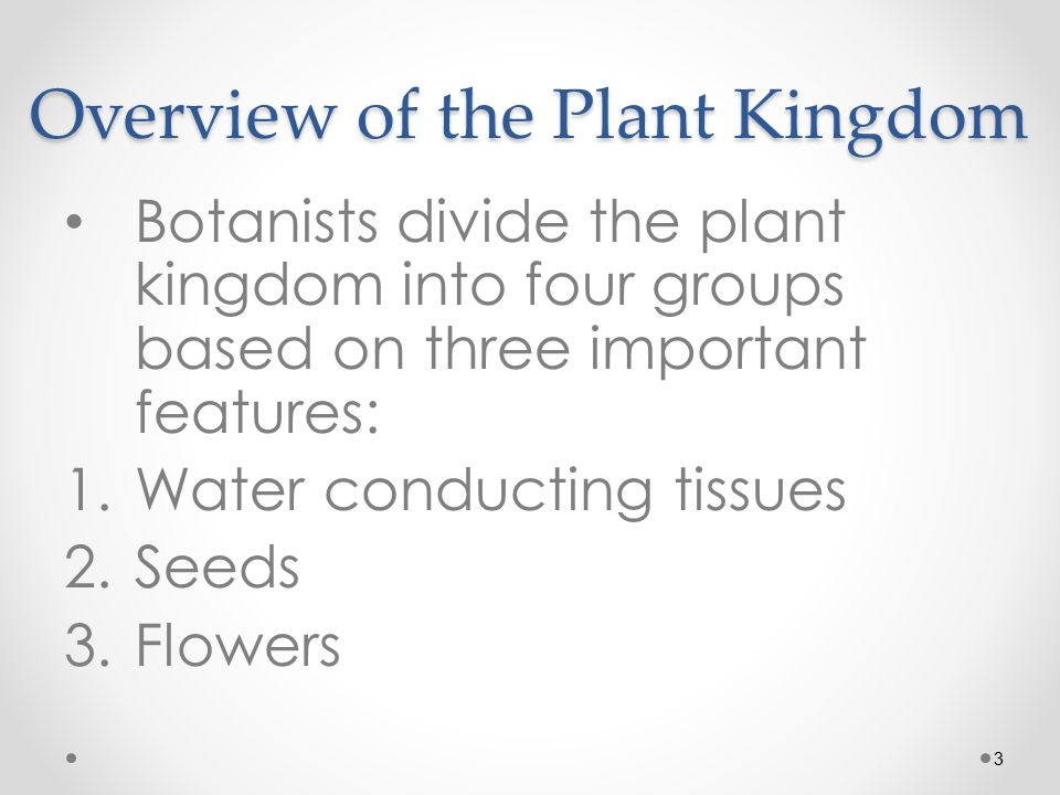 3 Overview of the Plant Kingdom Botanists divide the plant kingdom into four groups based on three important features: 1.Water conducting tissues 2.Seeds 3.Flowers