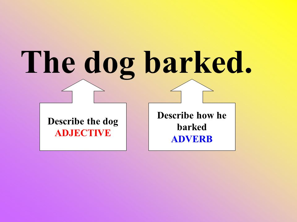 The dog barked. Describe the dog ADJECTIVE Describe how he barked ADVERB