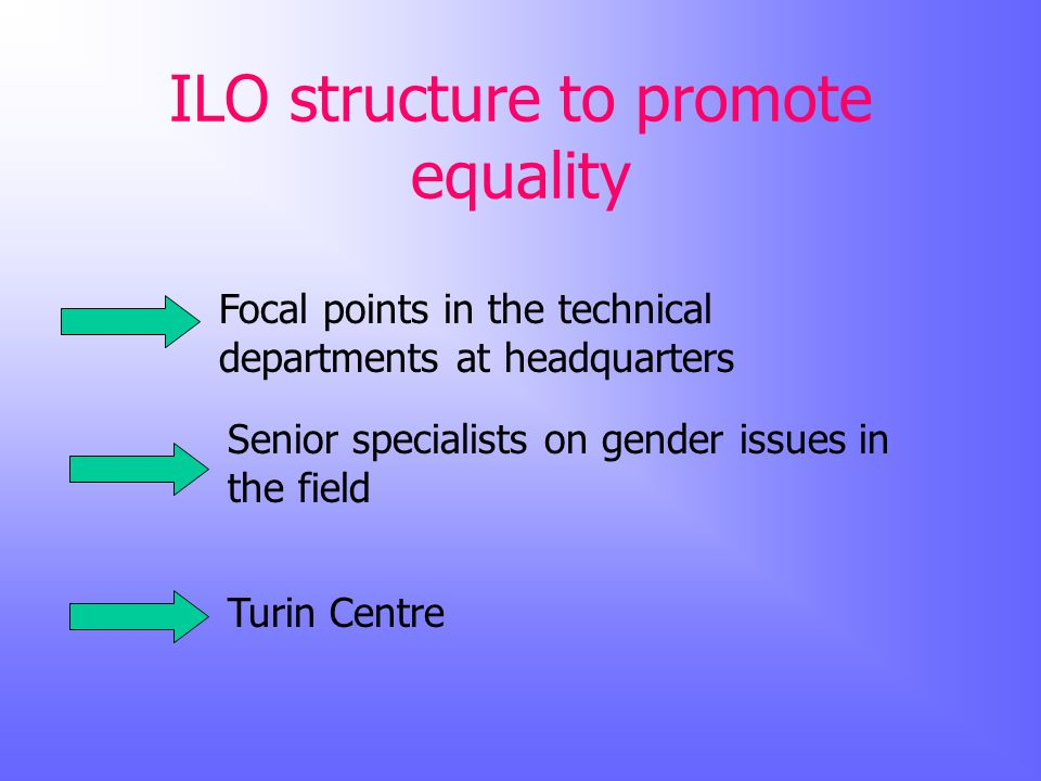 ILO structure to promote equality Focal points in the technical departments at headquarters Senior specialists on gender issues in the field Turin Centre