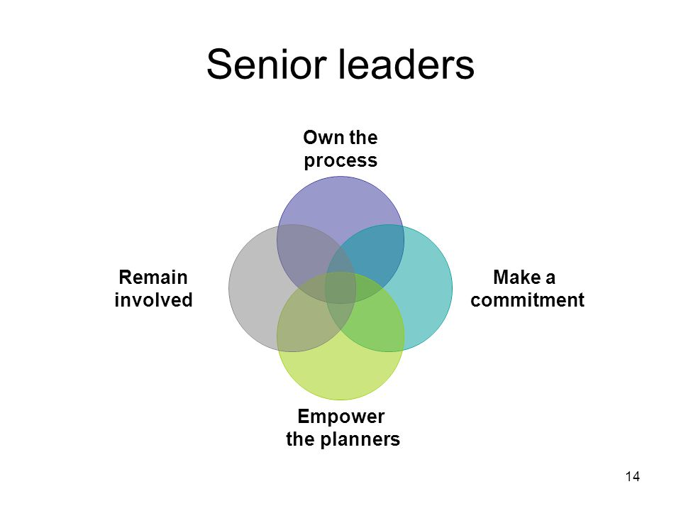 14 Senior leaders Own the process Make a commitment Empower the planners Remain involved