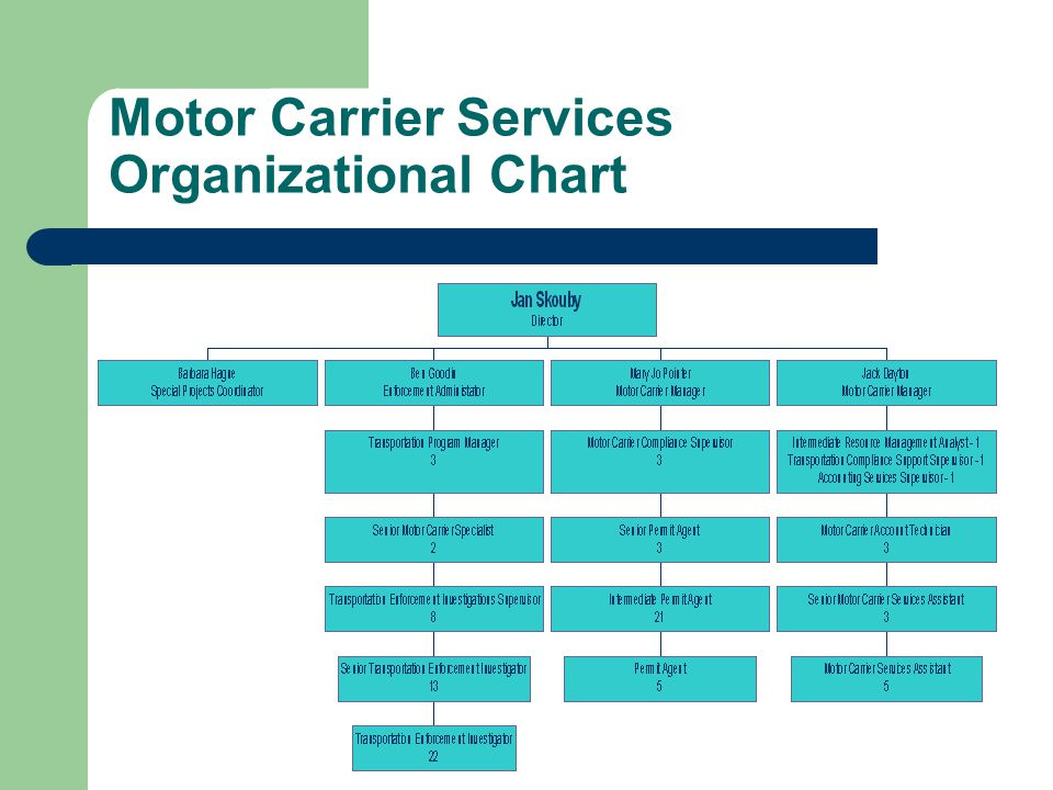 Motor Carrier Services Organizational Chart