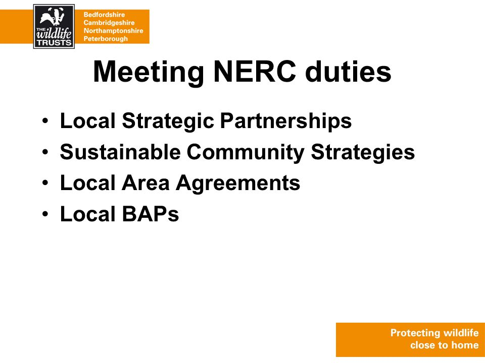 Meeting NERC duties Local Strategic Partnerships Sustainable Community Strategies Local Area Agreements Local BAPs