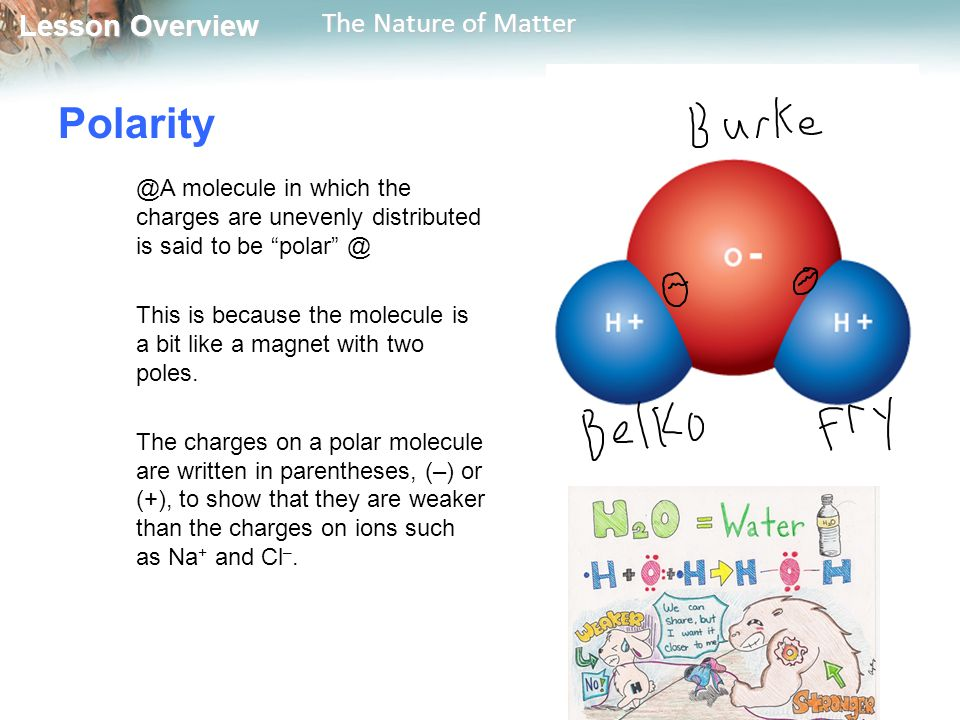 Lesson Overview Lesson Overview The Nature of Matter molecule in which the charges are unevenly distributed is said to be This is because the molecule is a bit like a magnet with two poles.