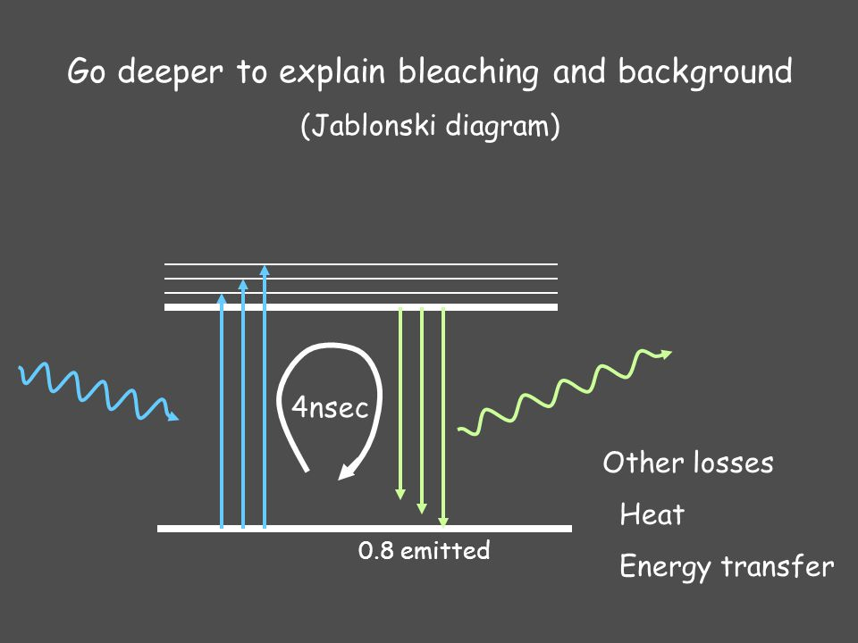 Biology 177 principles of modern microscopy lecture 06 29 4nsec go deeper to explain bleaching and background jablonski diagram 08 emitted other losses heat energy transfer ccuart Gallery