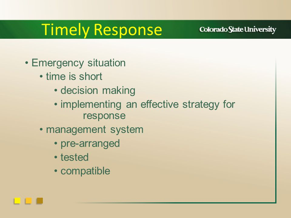 Emergency situation time is short decision making implementing an effective strategy for response management system pre-arranged tested compatible Timely Response