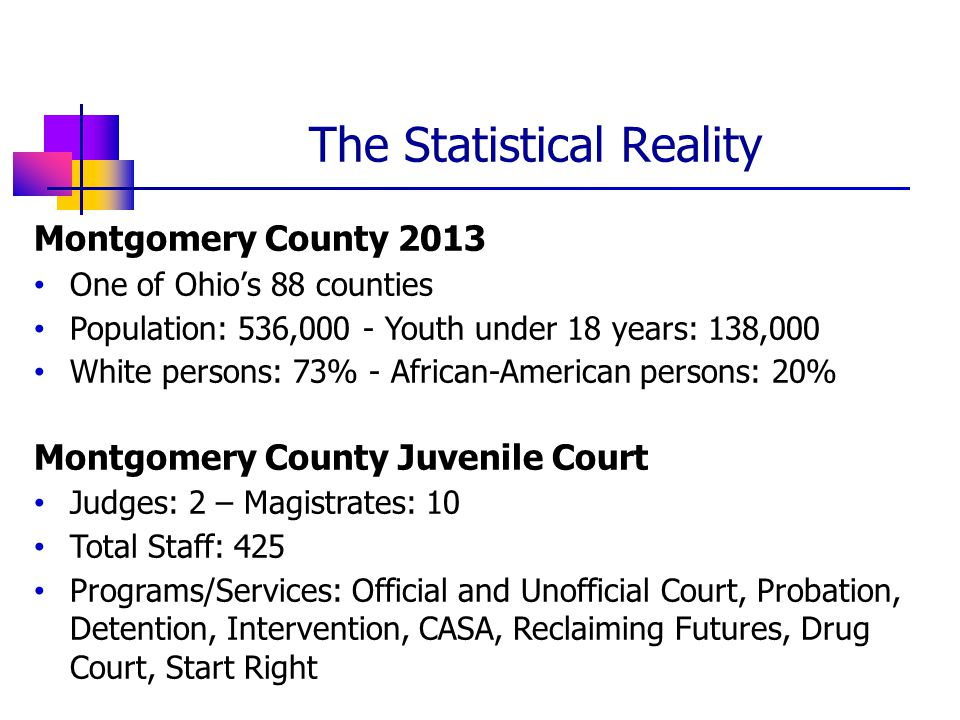 Montgomery County 2013 One of Ohio's 88 counties Population: 536,000 - Youth under 18 years: 138,000 White persons: 73% - African-American persons: 20% Montgomery County Juvenile Court Judges: 2 – Magistrates: 10 Total Staff: 425 Programs/Services: Official and Unofficial Court, Probation, Detention, Intervention, CASA, Reclaiming Futures, Drug Court, Start Right The Statistical Reality