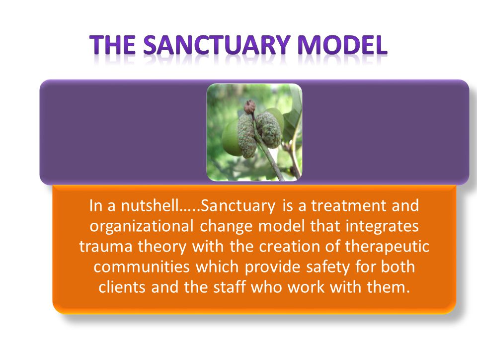 In a nutshell…..Sanctuary is a treatment and organizational change model that integrates trauma theory with the creation of therapeutic communities which provide safety for both clients and the staff who work with them.