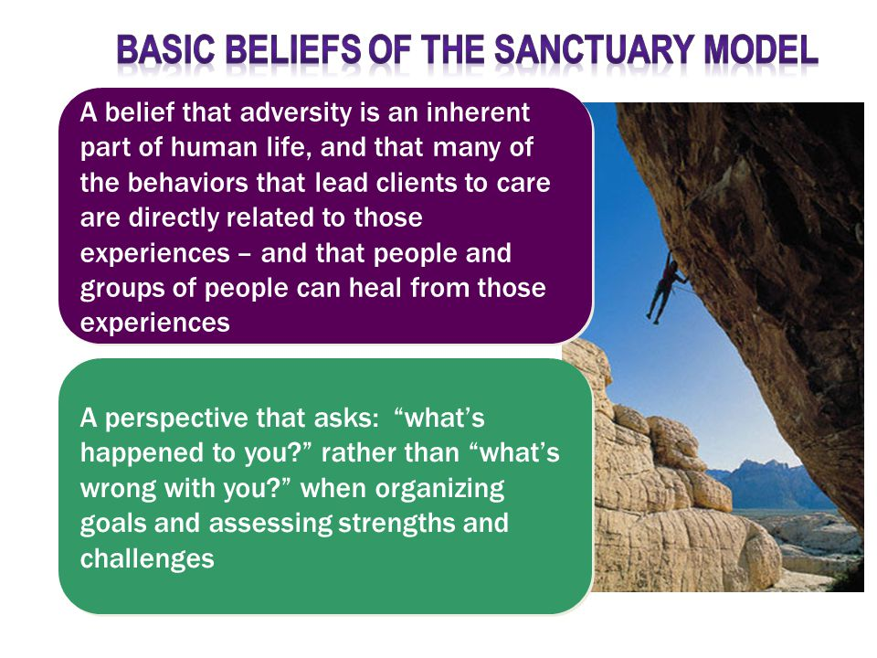 A perspective that asks: what's happened to you rather than what's wrong with you when organizing goals and assessing strengths and challenges A belief that adversity is an inherent part of human life, and that many of the behaviors that lead clients to care are directly related to those experiences – and that people and groups of people can heal from those experiences