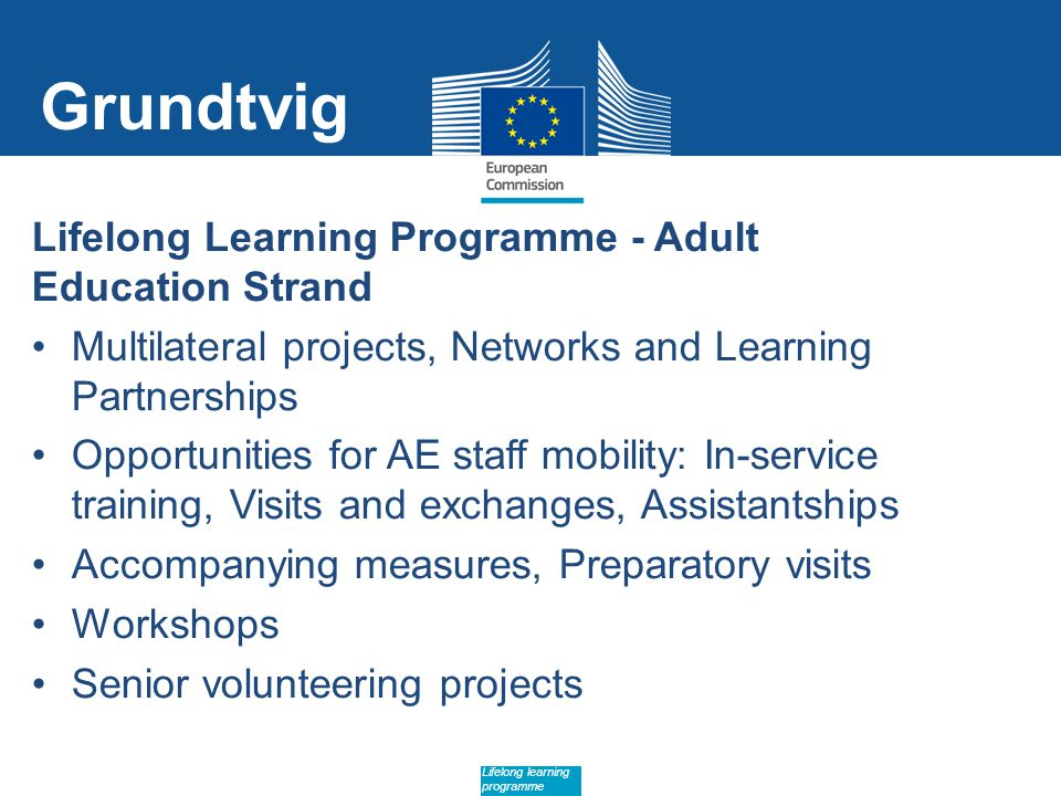 Date: in 12 pts Lifelong learning programme Grundtvig Lifelong Learning Programme - Adult Education Strand Multilateral projects, Networks and Learning Partnerships Opportunities for AE staff mobility: In-service training, Visits and exchanges, Assistantships Accompanying measures, Preparatory visits Workshops Senior volunteering projects