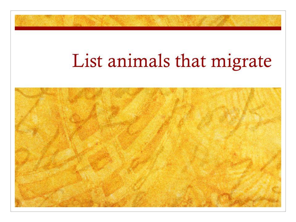 List animals that migrate  Definition A regular, seasonal