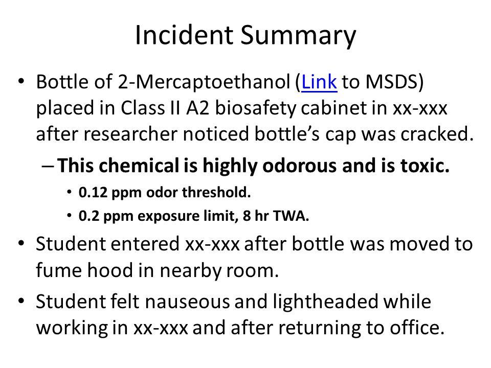 incident poem analysis