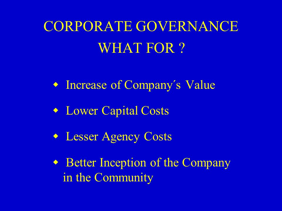 CORPORATE GOVERNANCE WHAT FOR .