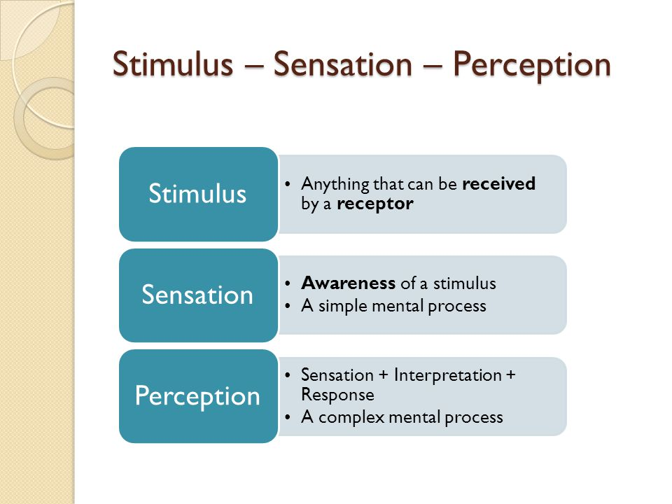 examples of sensation and perception psychology
