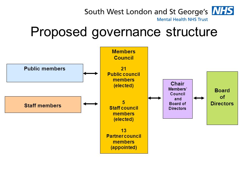Proposed governance structure Public members Staff members Members Council 21 Public council members (elected) 5 Staff council members (elected) 13 Partner council members (appointed) Chair Members' Council and Board of Directors Board of Directors