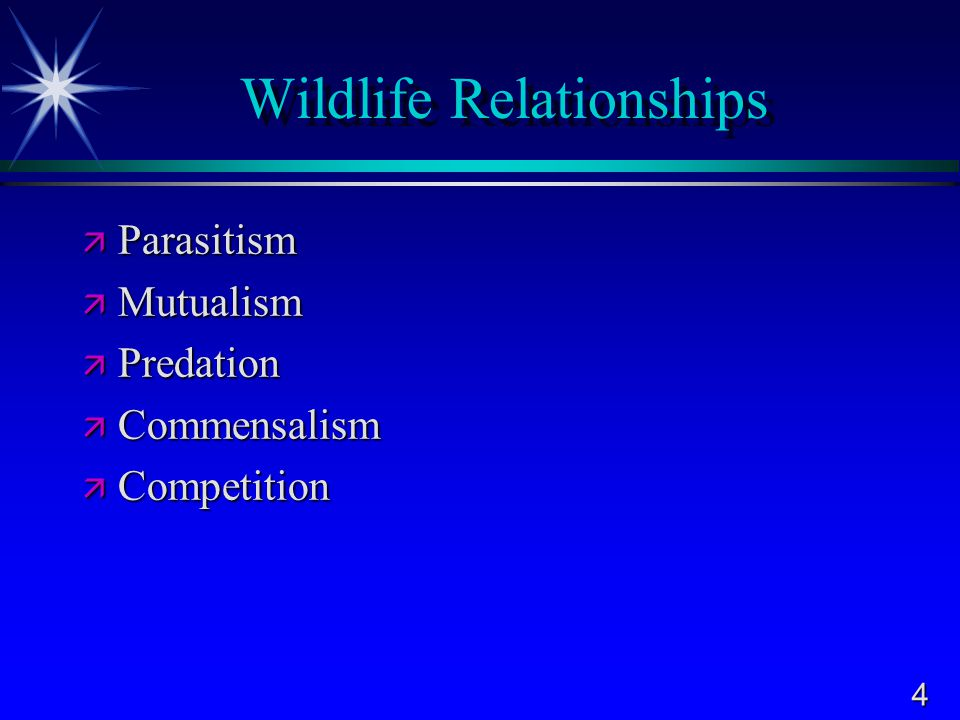 4 Wildlife Relationships  Parasitism  Mutualism  Predation  Commensalism  Competition