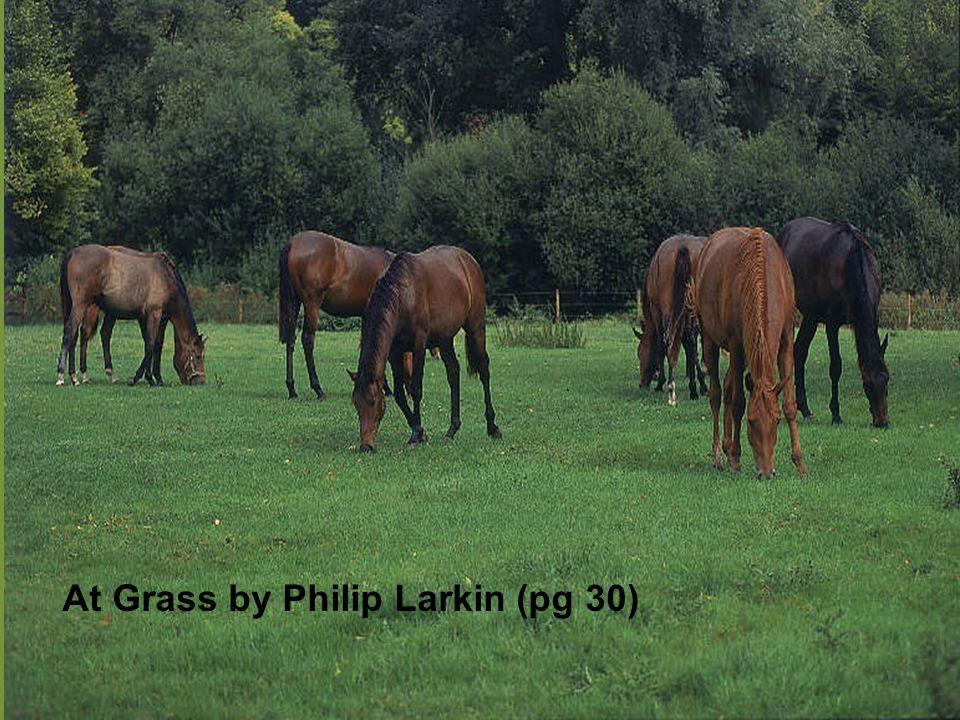at grass philip larkin summary