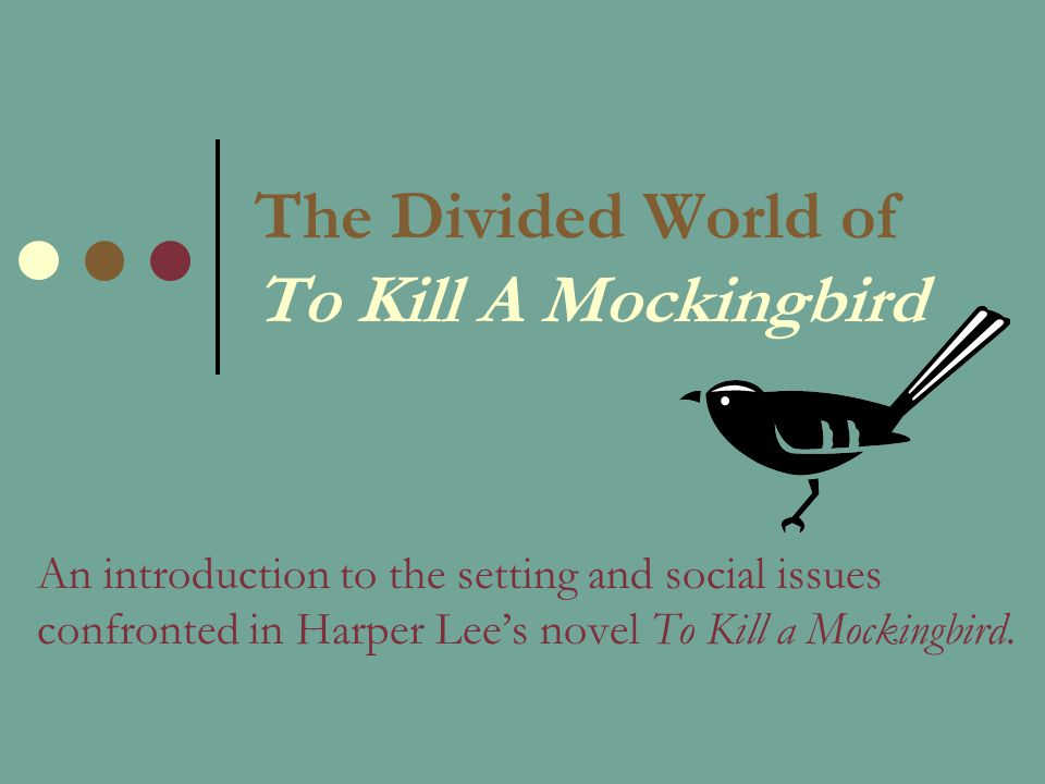 issues in to kill a mockingbird