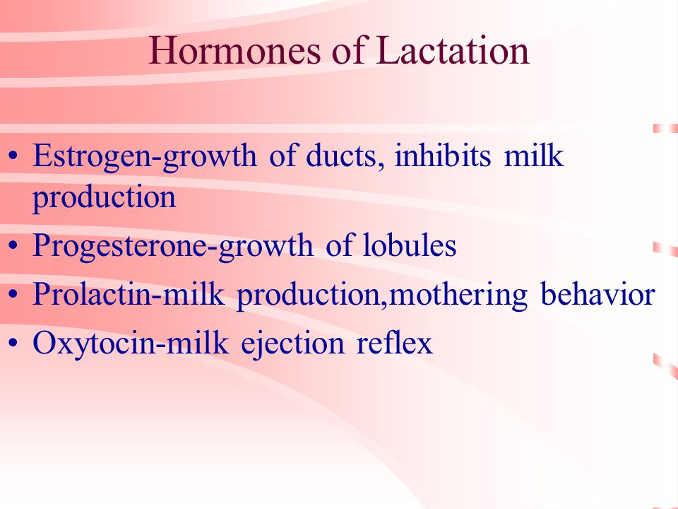 Hormones of Lactation Estrogen-growth of ducts, inhibits milk production Progesterone-growth of lobules Prolactin-milk production,mothering behavior Oxytocin-milk ejection reflex