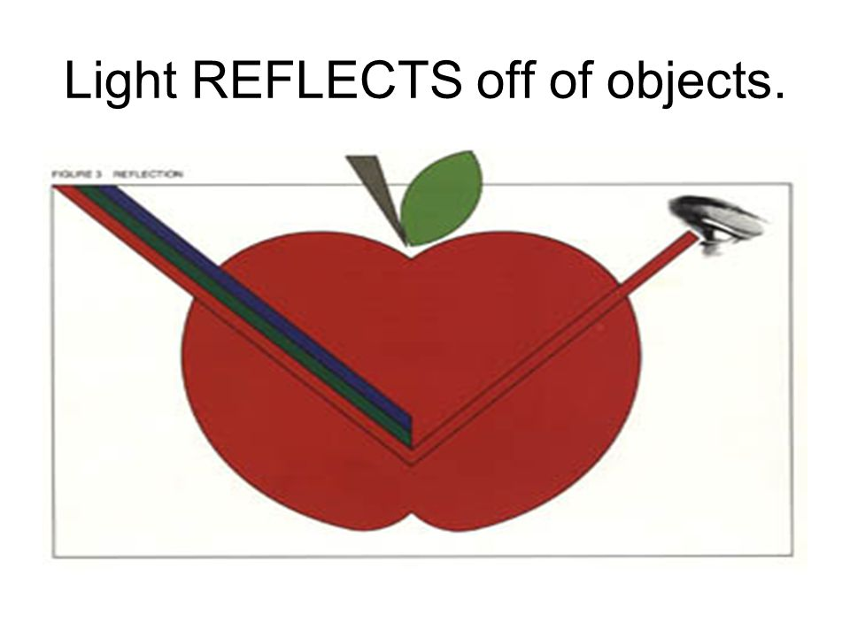 Light REFLECTS off of objects.