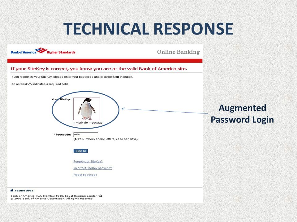 TECHNICAL RESPONSE Augmented Password Login