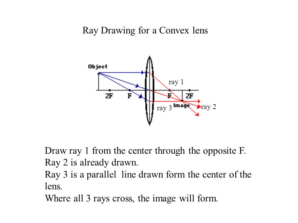 Ray Drawing for a Convex lens Draw ray 1 from the center through the opposite F.