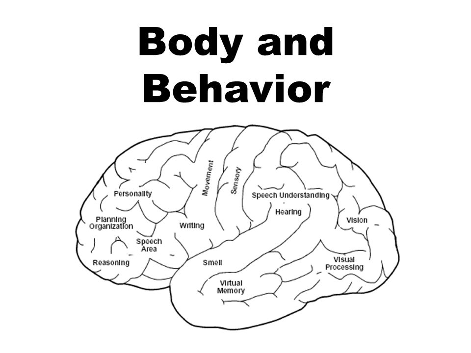 Body and Behavior