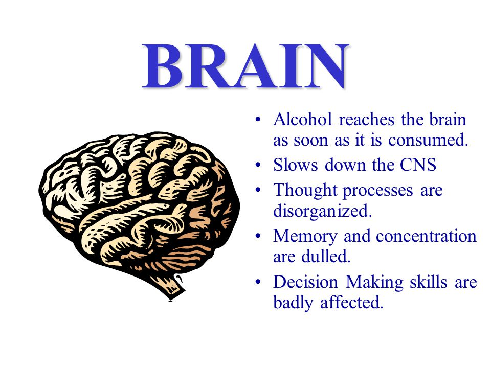 BRAIN Alcohol reaches the brain as soon as it is consumed.