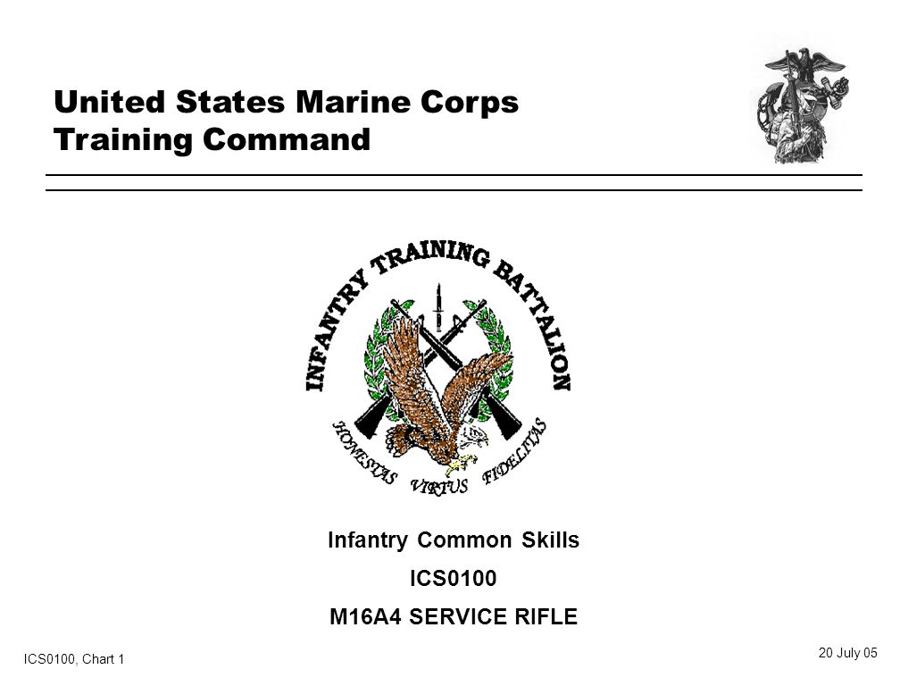 Infantry Common Skills Ics0100 M16a4 Service Rifle United States