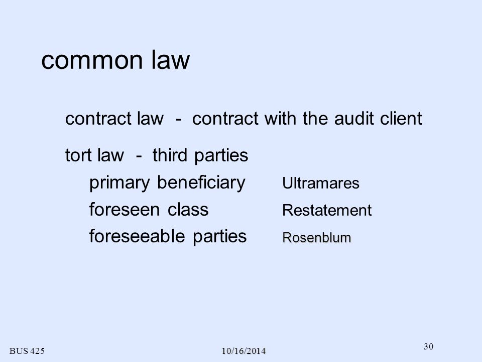 different classes of audit