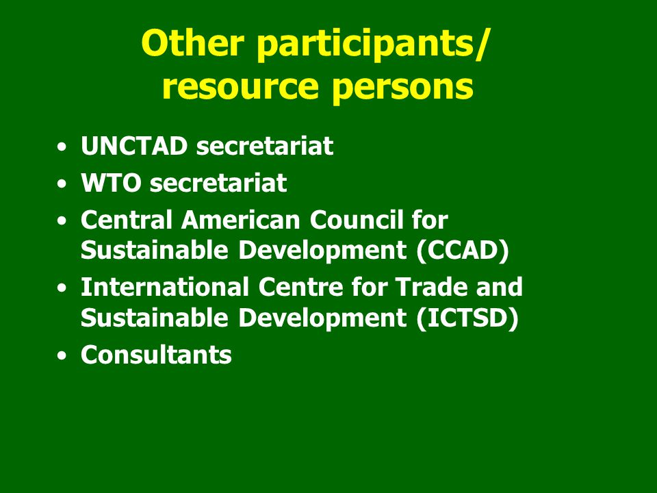 Other participants/ resource persons UNCTAD secretariat WTO secretariat Central American Council for Sustainable Development (CCAD) International Centre for Trade and Sustainable Development (ICTSD) Consultants