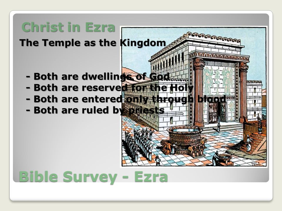 Bible Survey - Ezra Christ in Ezra The Temple as the Kingdom - Both are dwellings of God - Both are dwellings of God - Both are reserved for the Holy - Both are reserved for the Holy - Both are entered only through blood - Both are entered only through blood - Both are ruled by priests - Both are ruled by priests
