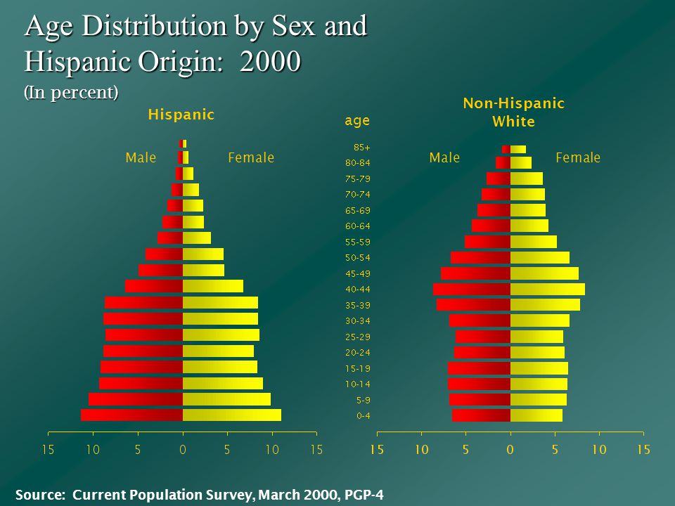 Age Distribution by Sex and Hispanic Origin: 2000 MaleFemale Male (In percent) Hispanic Non-Hispanic White Source: Current Population Survey, March 2000, PGP-4 age