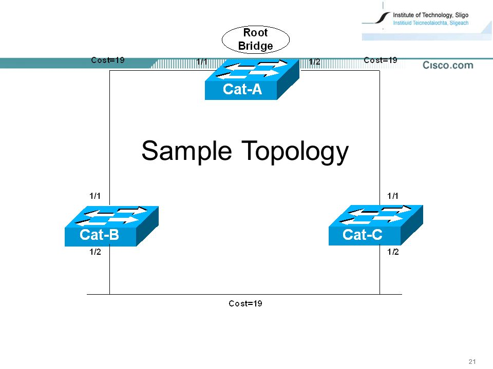 21 Sample Topology