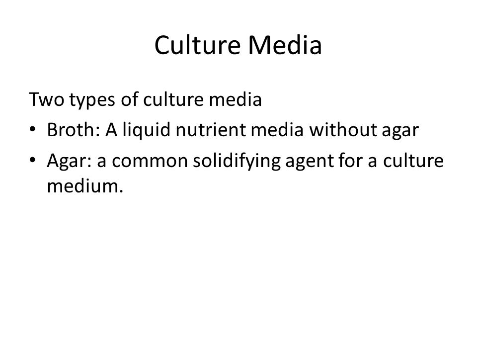 Culture Media Two types of culture media Broth: A liquid nutrient media without agar Agar: a common solidifying agent for a culture medium.