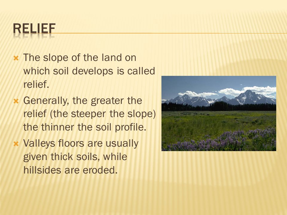  The slope of the land on which soil develops is called relief.