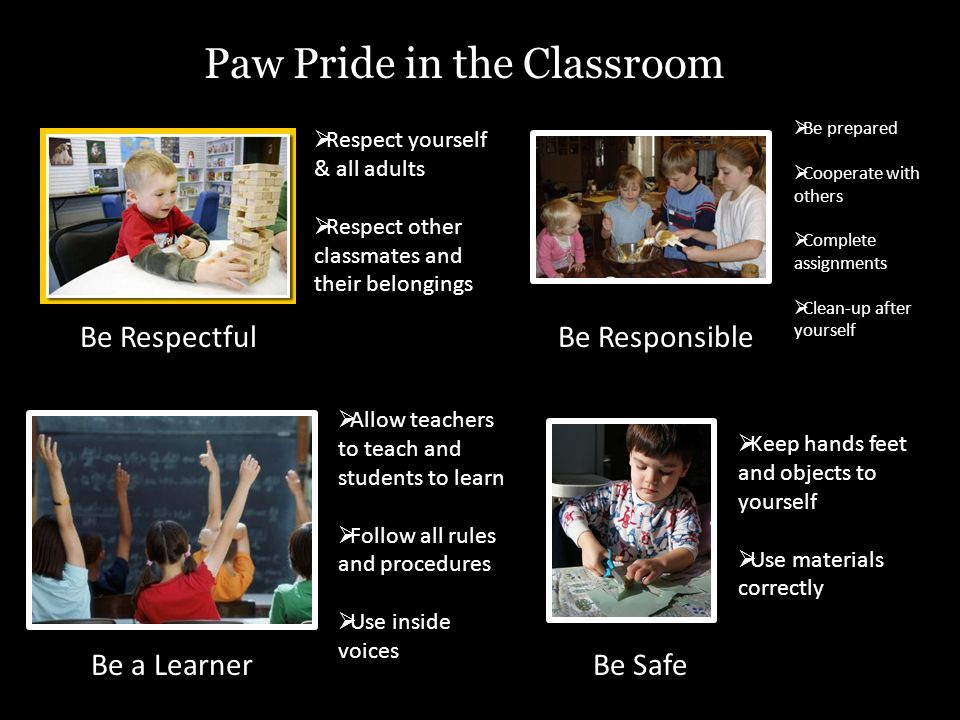 Paw Pride in the Classroom Be RespectfulBe Responsible Be a LearnerBe Safe  Respect yourself & all adults  Respect other classmates and their belongings  Be prepared  Cooperate with others  Complete assignments  Clean-up after yourself  Allow teachers to teach and students to learn  Follow all rules and procedures  Use inside voices  Keep hands feet and objects to yourself  Use materials correctly